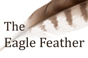 variegated isolated eagle feather